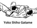 yokoshihogatame